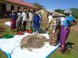 Participants undertaking a session on sorting of raw material used in production of briquettes
