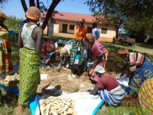 Participants undertaking a session on sorting of raw material used in production of briquettes.